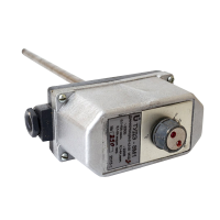 Терморегулятор ТУДЭ - фото